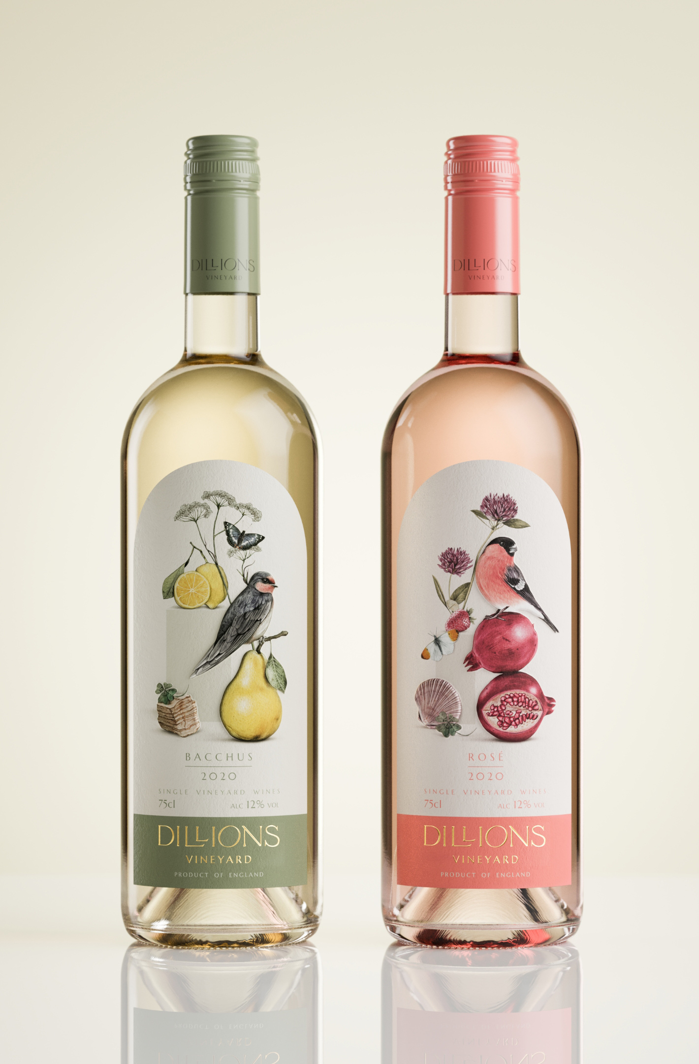 Dillion's white and rose wine labels