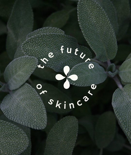 The future of skincare sage graphic by Kingdom & Sparrow