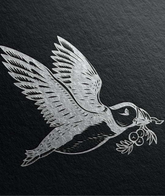 Tarquin's puffin design illustration by Kingdom & Sparrow