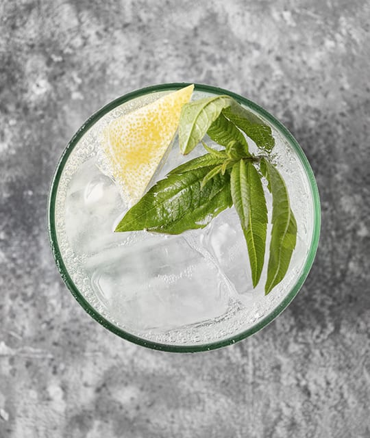Navas gin and tonic in a glass with mint and lemon